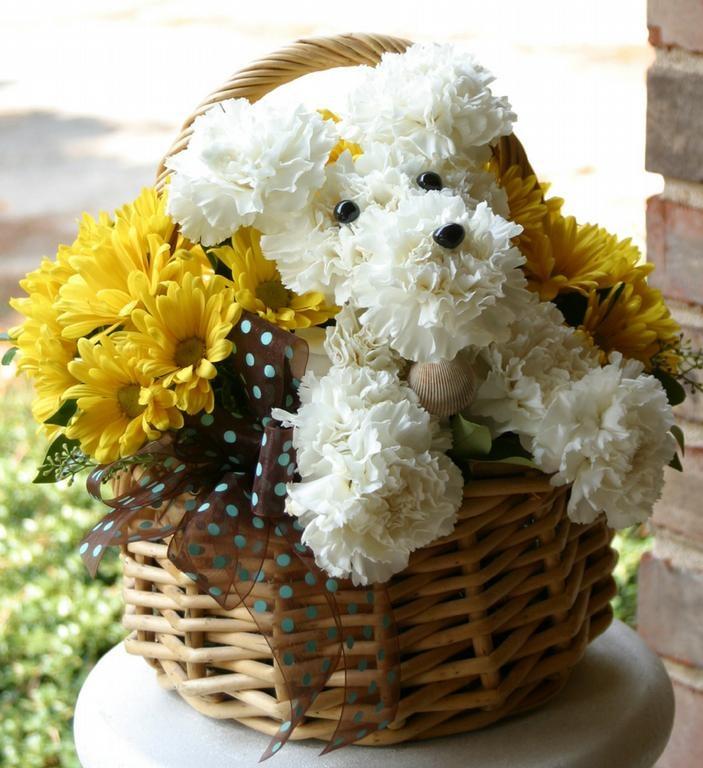 Puppy Arrangement Flowers Pinterest