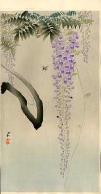 Koson Ohara 1877-1945  Flowering wisteria and insect