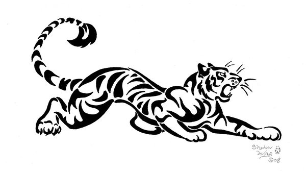 Tribal Tiger Drawing Pinterest