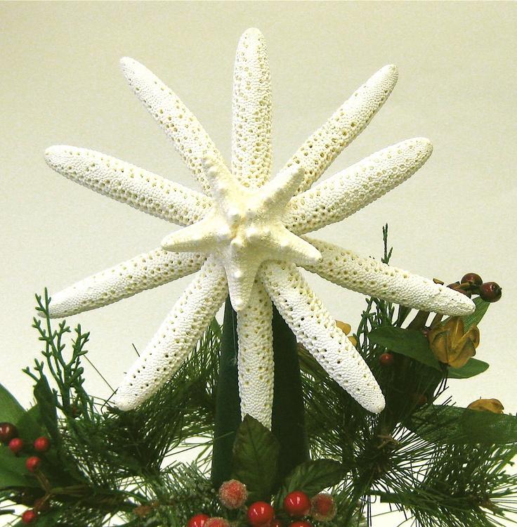 Starfish Tree Topper - Natural Starfish - 7