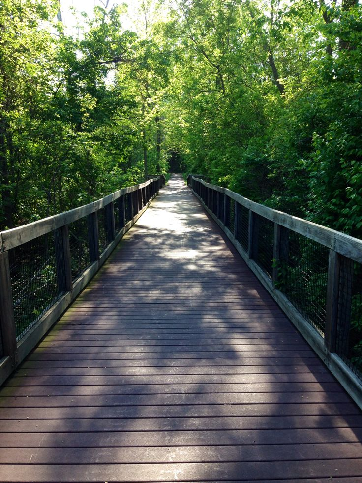 A Scenic Summer Road Trip in Mid-Michigan - Awesome Mitten