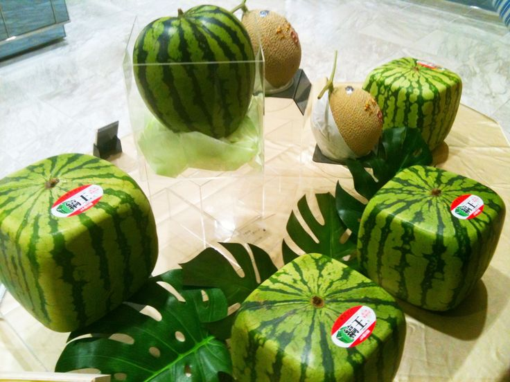 Pin by surfas culinary district on strange food pinterest - Square watermelons how and why ...