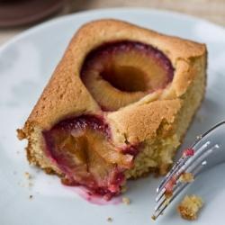 Dimply Plum Cake, made with Italian prune plums ::