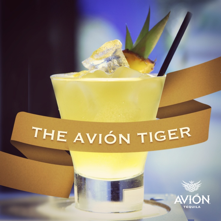 Pin by sara nelson on party on pinterest for Avion tequila drink recipes