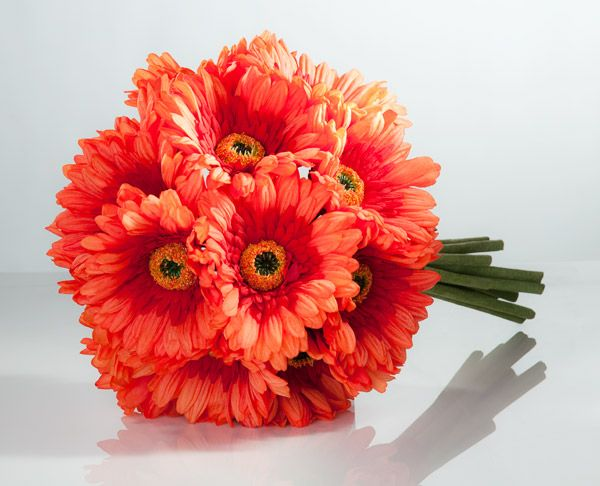 Wedding Bouquet Of Gerbera Daisies : Orange gerbera daisy bouquet large all the things i