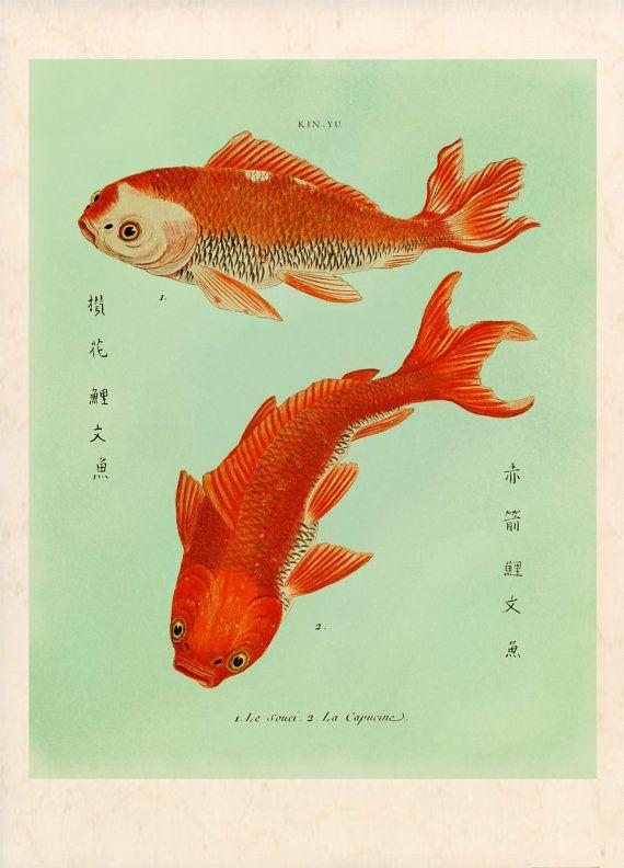 Two goldfish koi print fish art feng shui art for Koi fish and goldfish