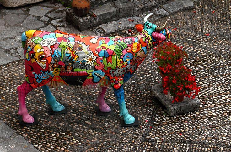 Vache colorée  Various pictures  Photos diverses  Pinterest