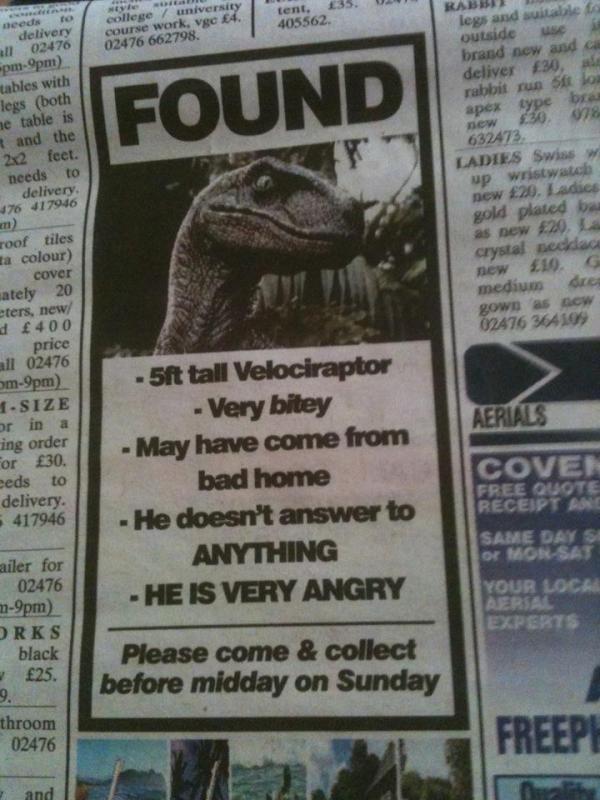 Velociraptor found