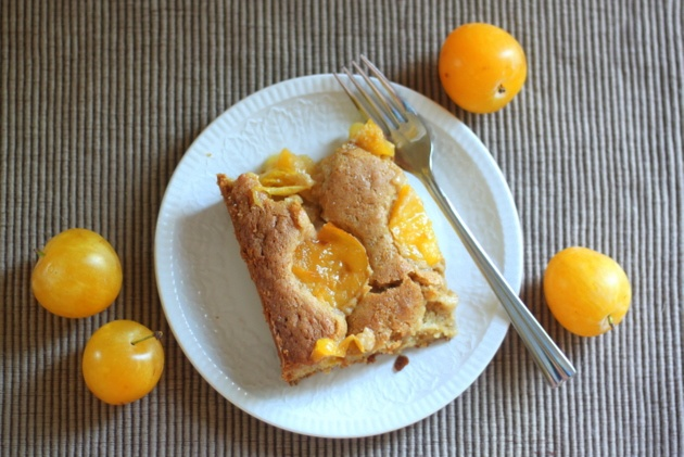 Dimply Greengage Plum Cake | The Hazel Bloom