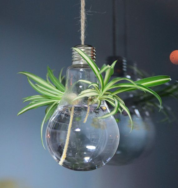 Light Bulb Glass Hanging Planter Container Vase di KNIKlampwork, $5.50