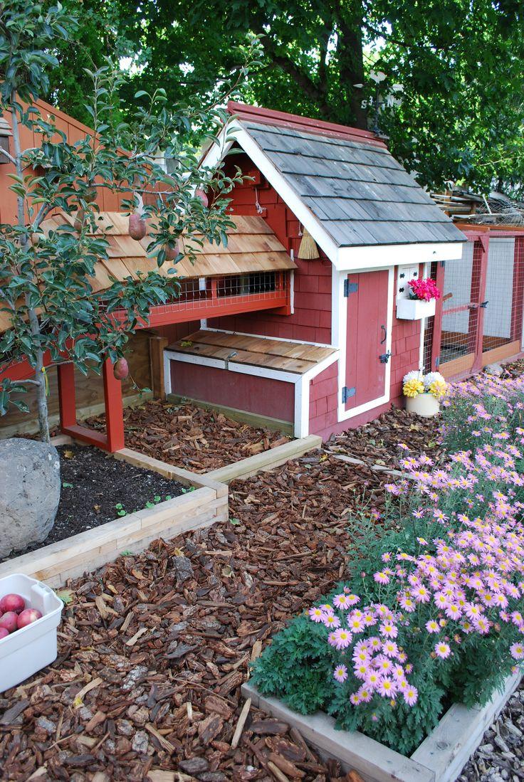 my backyard chicken coop outdoor chicken coops pinterest