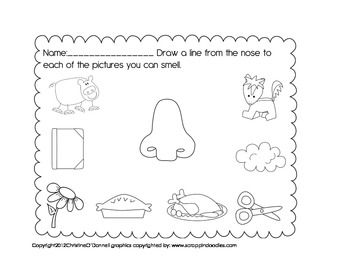 My 5 Senses: Smelling Worksheet Freebie! | montessori | Pinterest