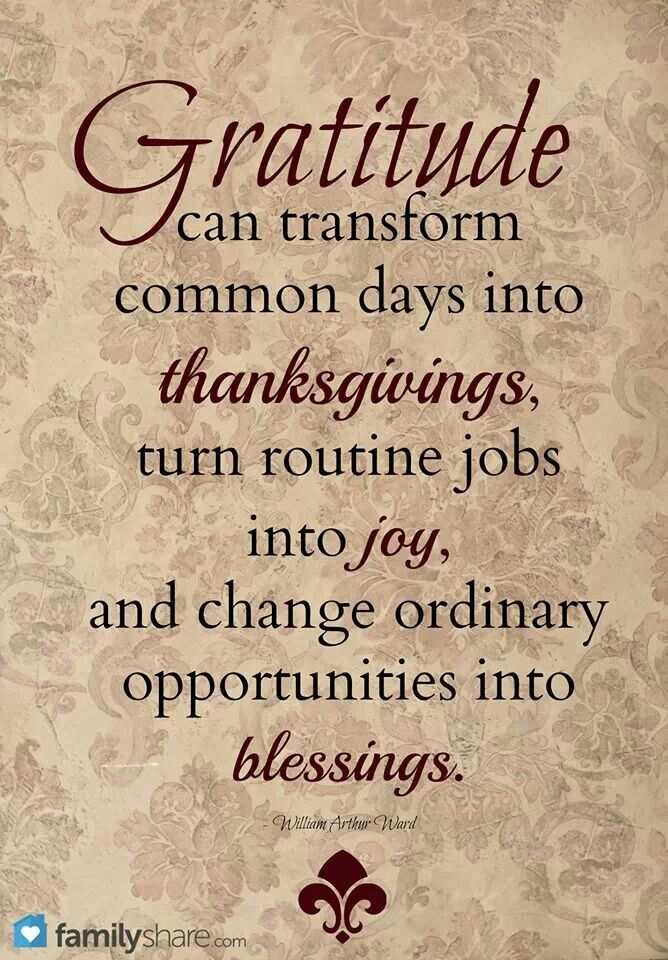 Gratitude can transform regular days into thanksgivings. #givingthanks