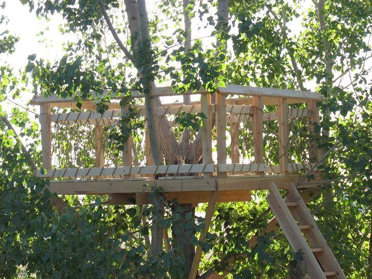 Backyard Treehouse Without Tree : treehouse15JPG (726?545)  Tree Houses  Pinterest