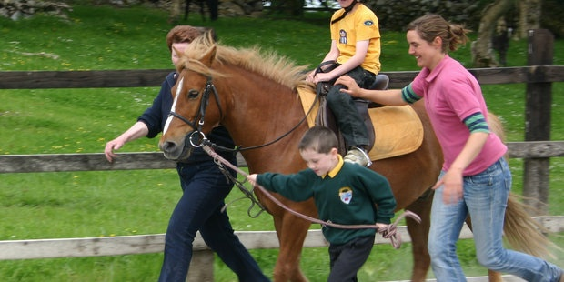 horseback riding lessons adult western