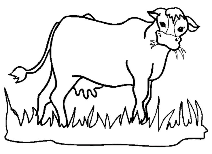 How to draw a cow eating grass