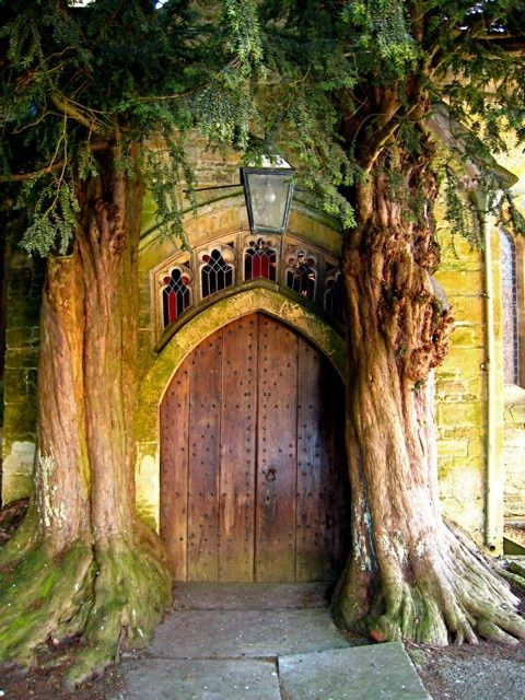 Door at St Edwards Parish Church in the Cotswolds, flanked by yew trees  #built-environment