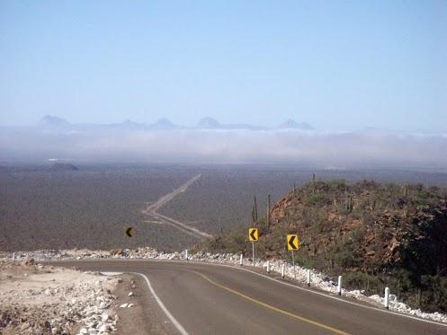 """""""El Vizcaíno Biosfera"""" in Baja California Sur, Mexico. http://bajabybus.com/blog/item/6-sierradesanfrancisco"""