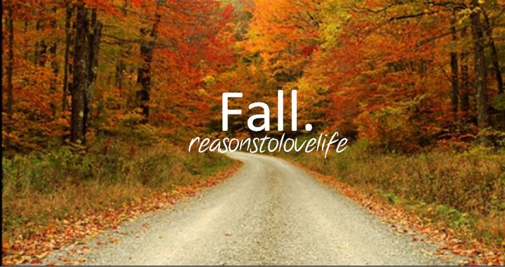 Nice Fall day | ...K@@L Places all over the WORLD ...