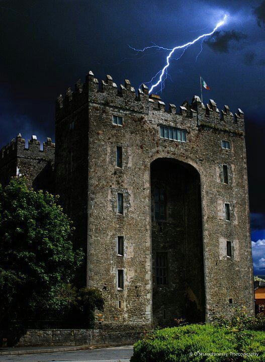 Bunratty castle tour