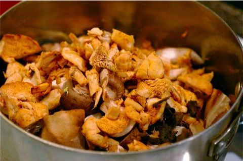 Wild Mushroom Ragout- French Friday | Healthy Foods | Pinterest