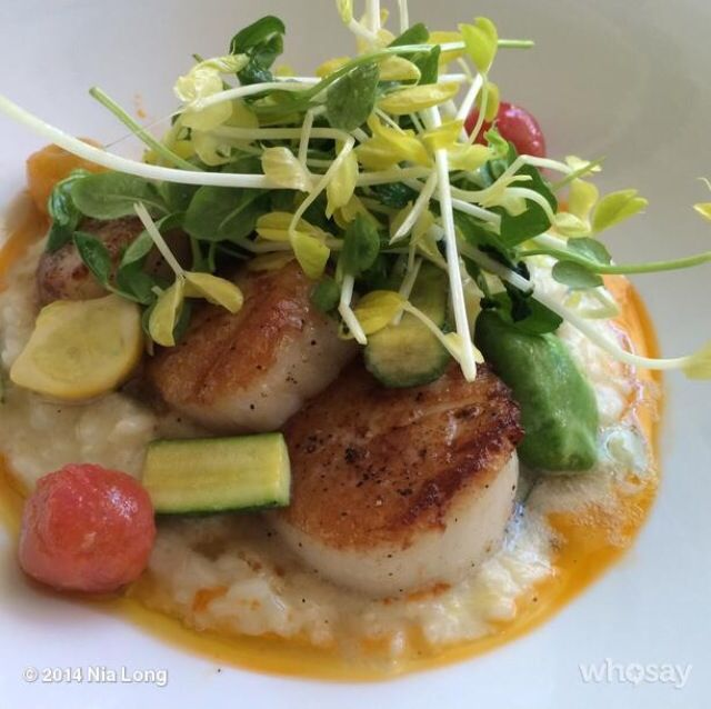 """Summer scallop on risotto 