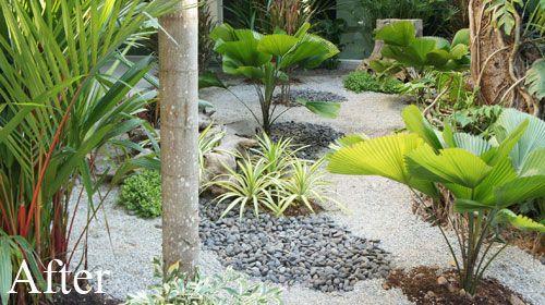Modern japanese garden in thailand yard pinterest for Plants found in japanese gardens