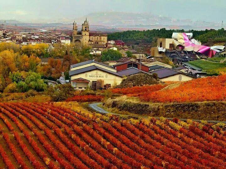 El ciego la rioja d as de vino y rosas pinterest for Hotel el ciego marques de riscal