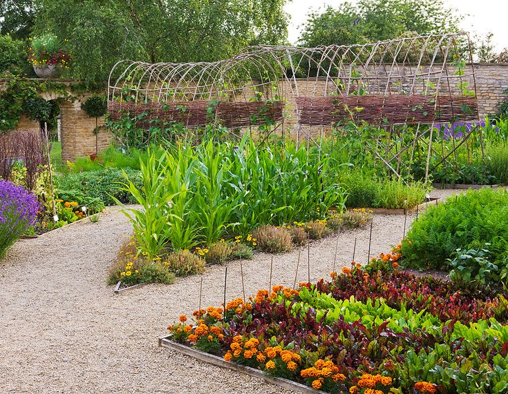 Permaculture design market garden pinterest for Kitchen garden designs