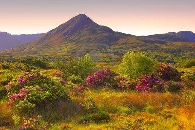 Connemara, Co. Galway,