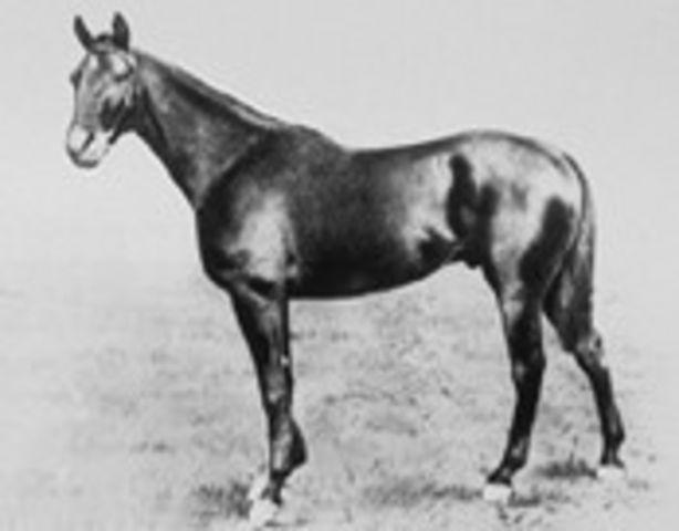 Manuel | Winner of the 25th Kentucky Derby | 1899 | Jockey: F.Taral | 5-Horse Field | $4,850 prize