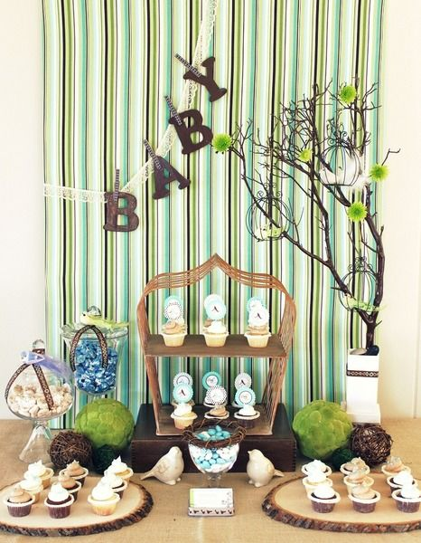 Little birdie-themed baby shower
