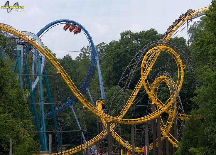 Busch Gardens Va Roller Coasters Pinterest