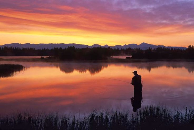 Ffim maine for Fly fishing in maine