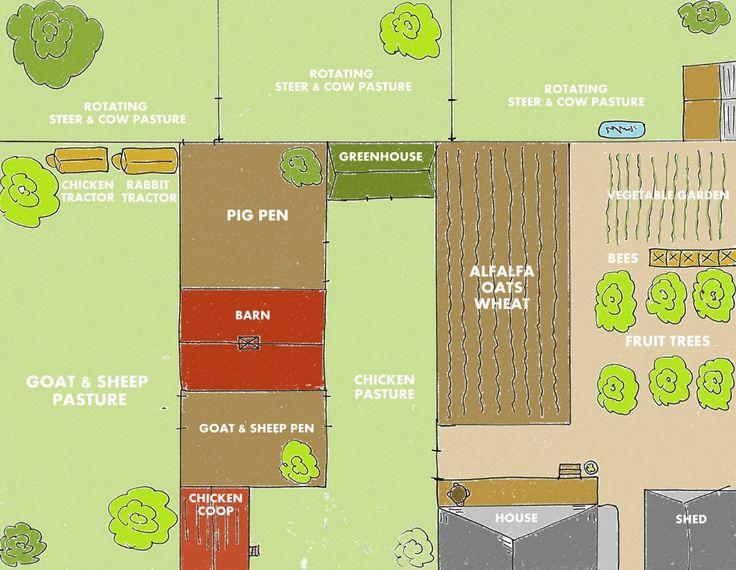 Self Sufficient Backyard Farm : backyards