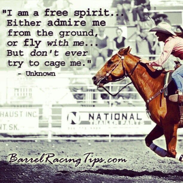 Barrel racing quotes and sayings