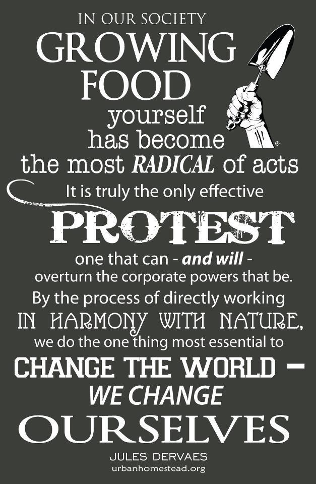 Let the revolution begin!