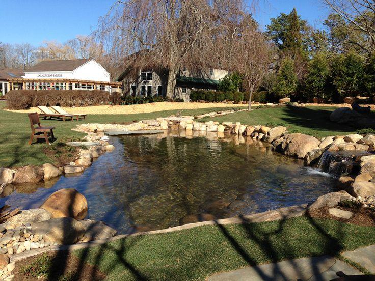 man made pond flower gardens pinterest