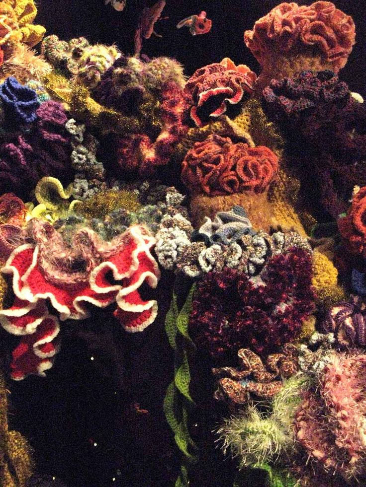 ... of flowers. Cockscomb. So beautifully done. Crochet Coral Reef