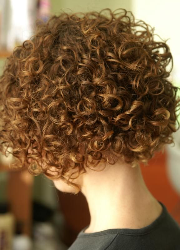 Stacked Permed Bob Picture   Short Hairstyle 2013
