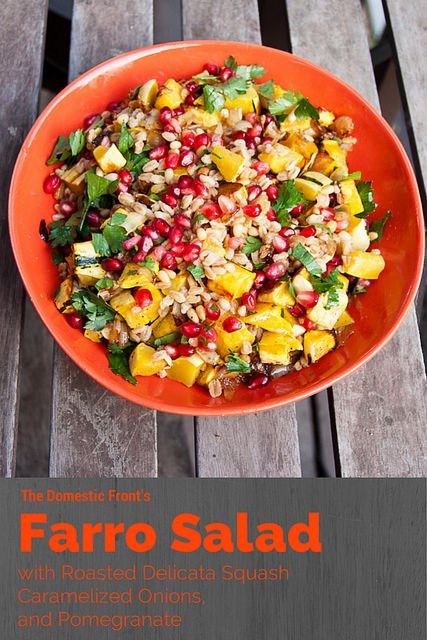 This Warm Farro Salad with Roasted Delicata Squash from the Domestic ...