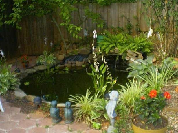 How To Build A Back Yard Fish Pond