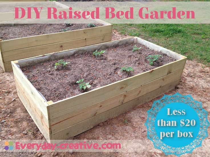 cheap raised garden bed ideas photograph related gallery f. Black Bedroom Furniture Sets. Home Design Ideas