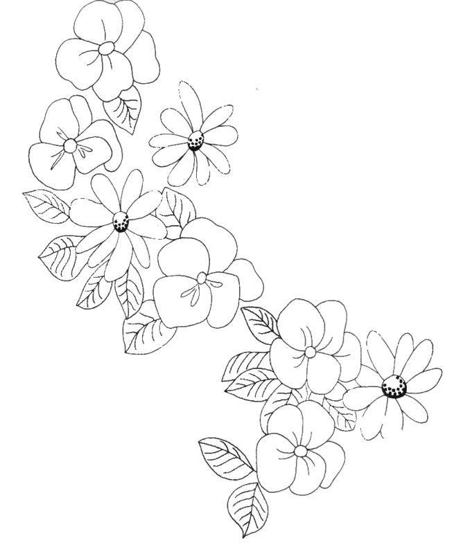 Quelques fleurs pour changer ....