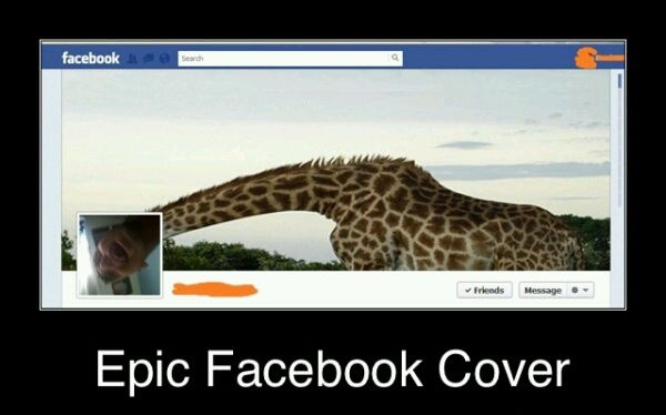 funny pictures for facebook cover photo