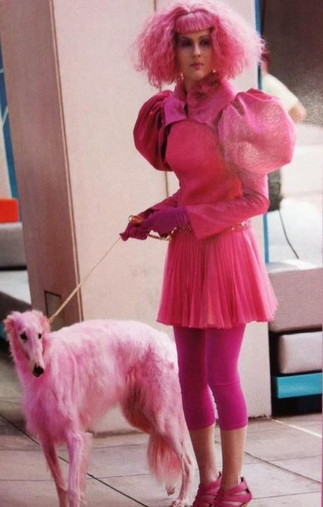 Pink borzoi in the Hunger Games movie!      I gasped and pointed and my mom and I grinned and nodded excitedly.  It was a magical moment.  Looks like a lady zoi, or a very delicate male.