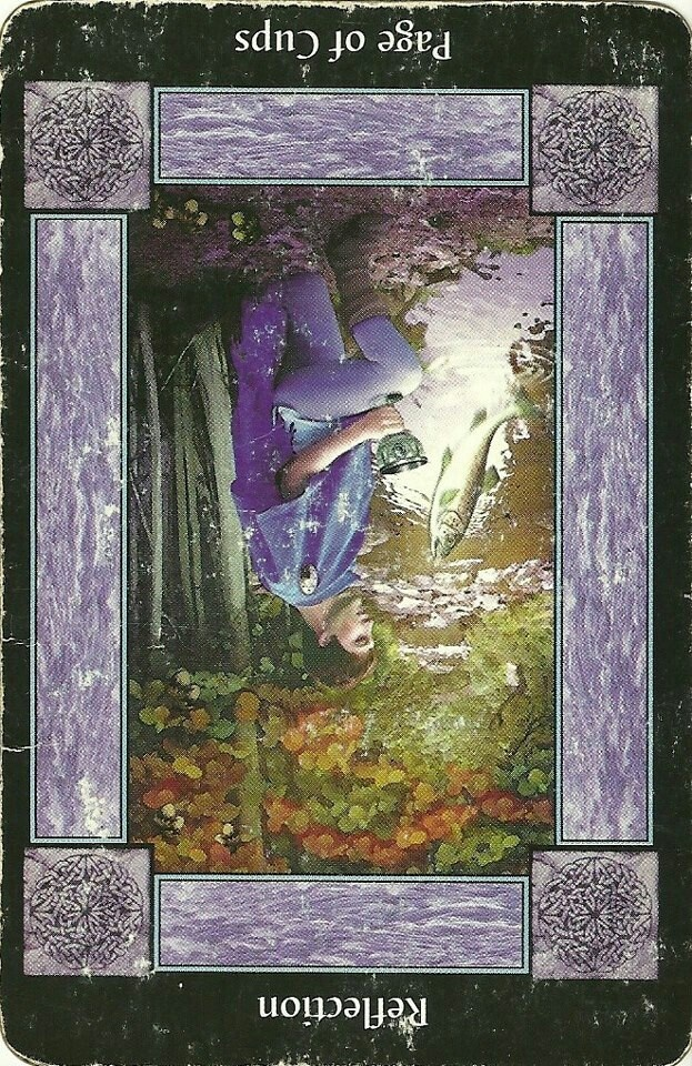Page of Cups | Daily Tarot Reading | Pinterest