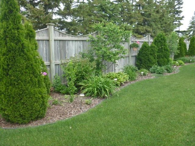 Backyard Idea Privacy Fence Bushes Fire Pits Chuck