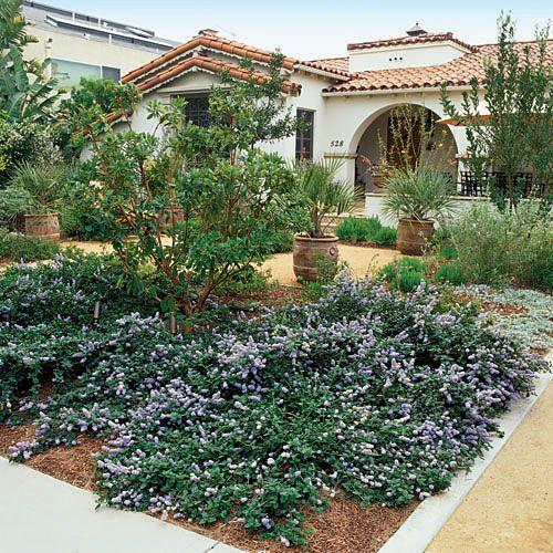 Desert Backyard Makeover : Gardens