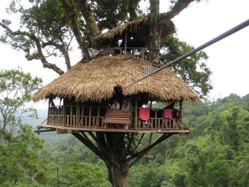 Đến với khu bảo tồn Bokeo bạn sẽ được sống trong một thiên nhiên hoang dã